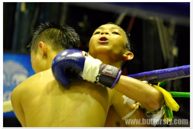 clinch muay thai